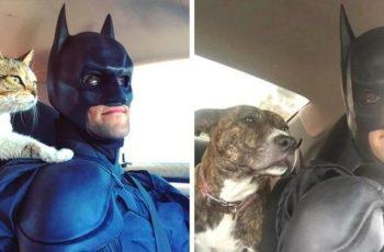 Este Batman de la vida real está en una misión para rescatar animales sin hogar